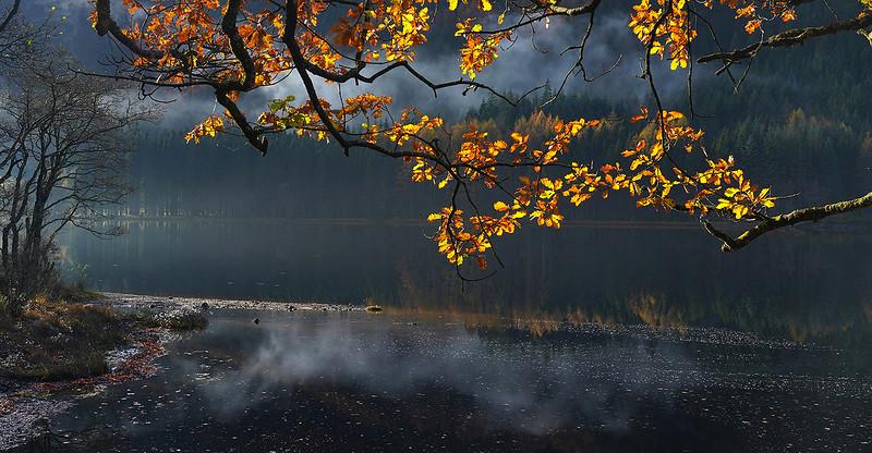 47. Autumn,Loch Chon.jpg