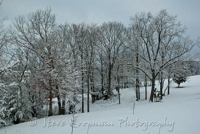 2012 March Snow