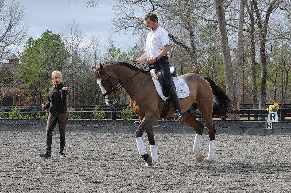 January 26-28, 2012  - Bettina Hoy Clinic, Bridle Creek Farm, Aiken, South Carolina - Boyd Martin, Neville Bardos, Otis Barbotierre, Dr. Kevin Keane, Fernhill Flutter, Jan Byyny, Syd Kent, Why Not