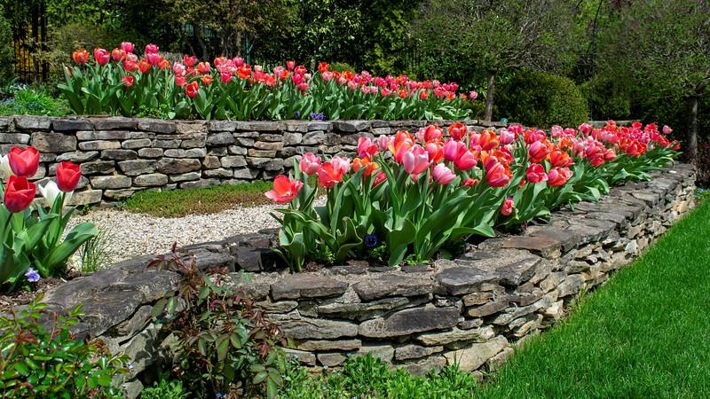 Garden 1, 066.jpg