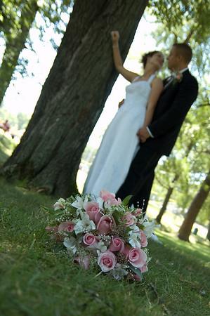 Msc weddings - engagements
