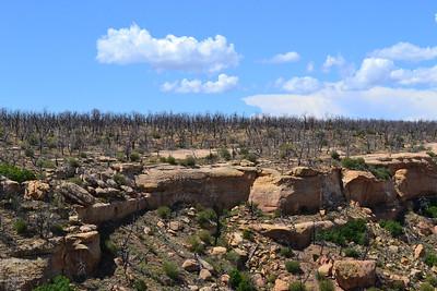 2011_08_29 - Mesa Verde National Park, CO