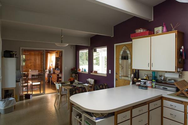 Kitchen and Back Yard