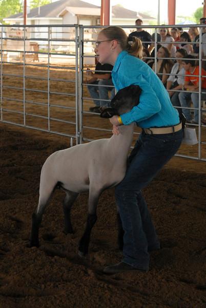2008 La Porte Livestock Show  04-08-08 Lamb, Swine