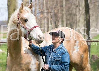 Crull Paint Horses 2015