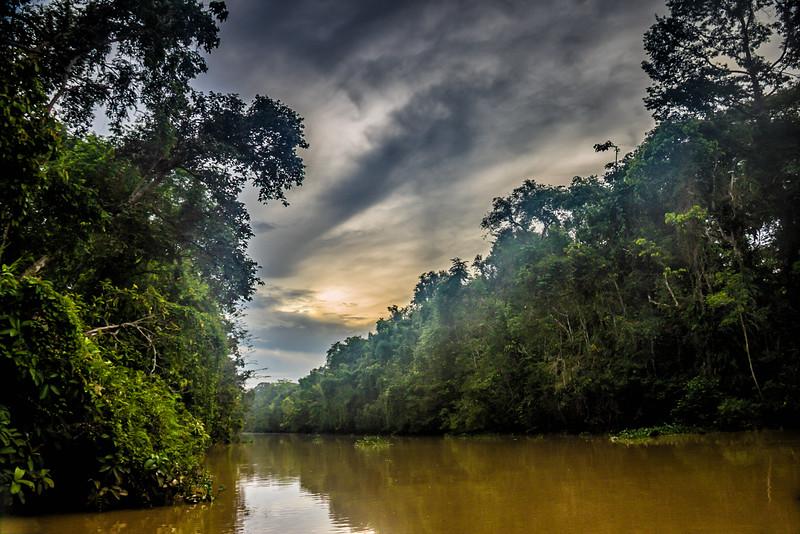 Southeast Asia adventures Kinabatangan River Borneo