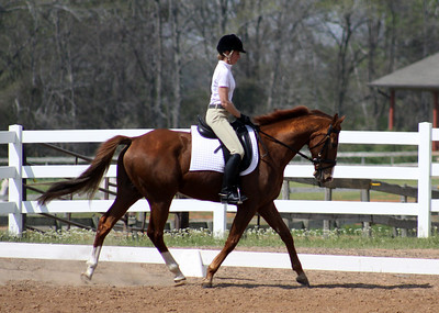 March 19, 2011 Tri State Dressage Show at Holly Hill