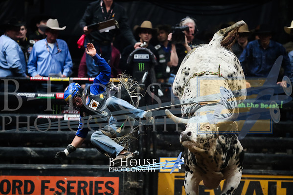 Professional Bull Riding (PBA)