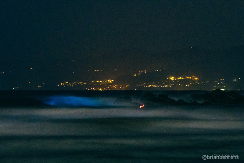 2020-05-02-bioluminescent-waves-14.jpg