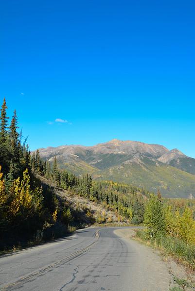 Denali-National-Park-46.jpg