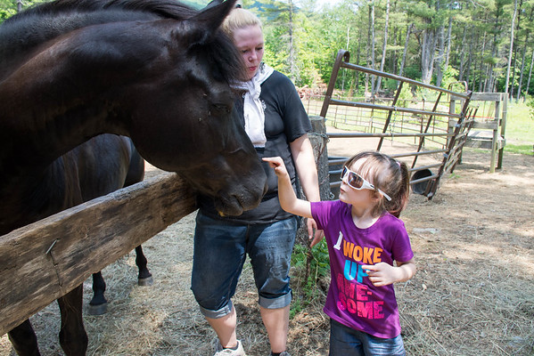Horses For Veterans, Weatherfield