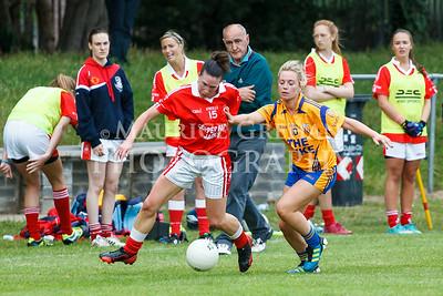 Na Fianna Snr Ladies Football vs St Brigids 020714