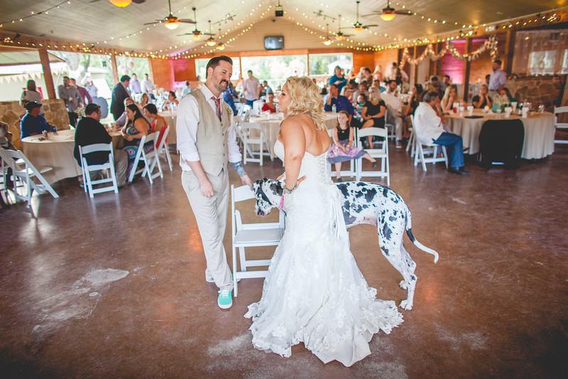 2014 09 14 Waddle Wedding - Reception-723.jpg