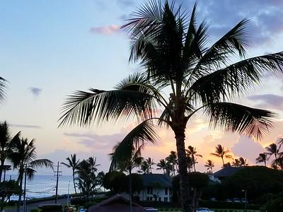 Grace's Kauai trip July 2017