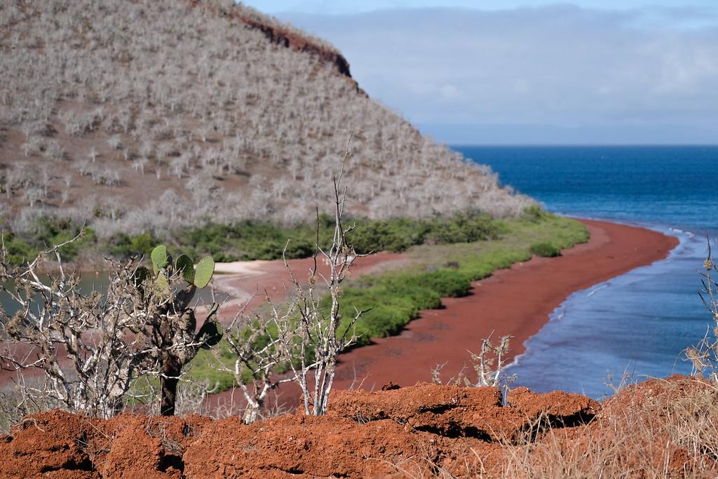Overlooking Rábida Island