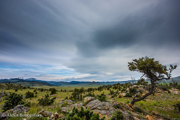 Best of Montana Land Reliance
