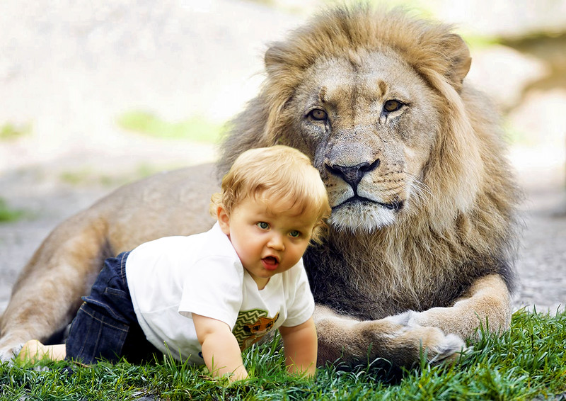 07-connor with lion.jpg