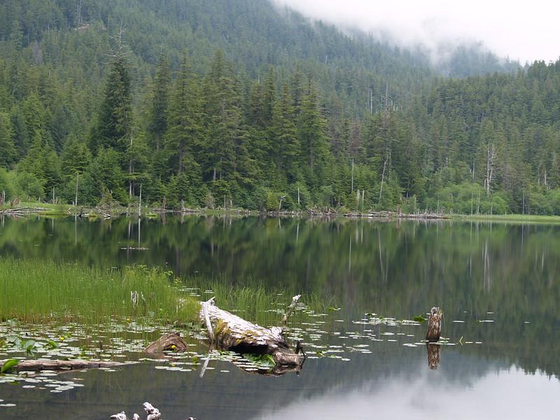 Thimbleberry Lake - July, 2009