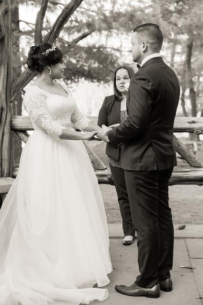 Central Park Wedding - Ariel e Idelina-34.jpg