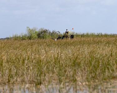 Florida Everglades February 2018