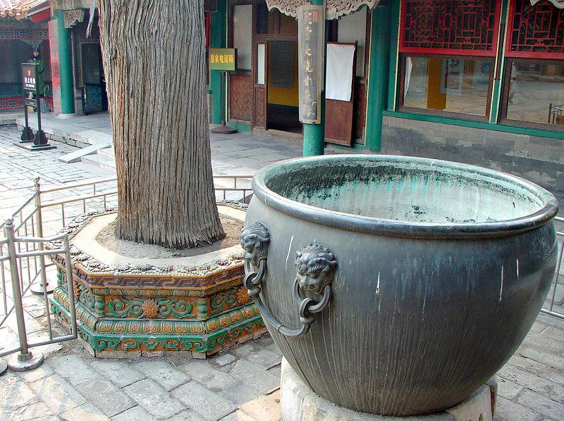 China2007_080_adj_l_smg.jpg