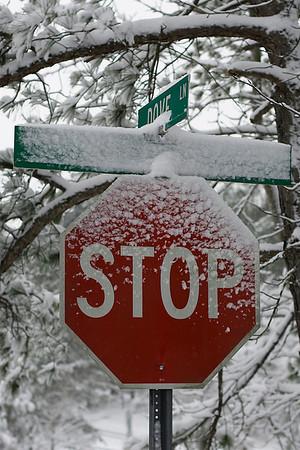 Walden Snowstorm 2009