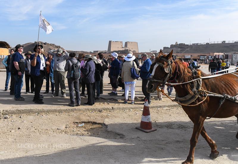 020820 Egypt Day7 Edfu-Cruze Nile-Kom Ombo-5981.jpg