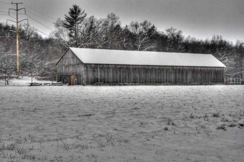 Easy Pickins Winter 034-1677214276-O.jpg