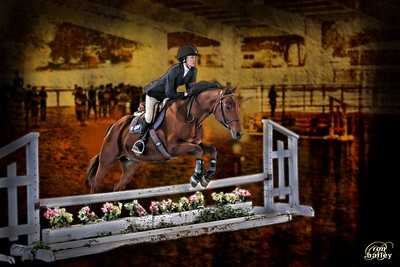Equestrian 2013-2014
