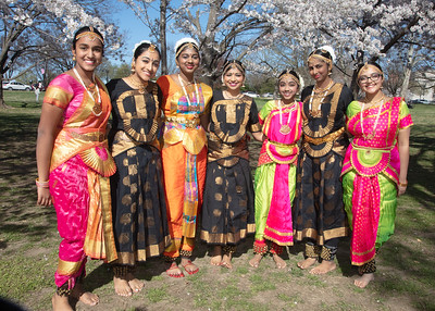Sindhura School of Dance Performs Dances of India Among the Cherry Blossoms in DC