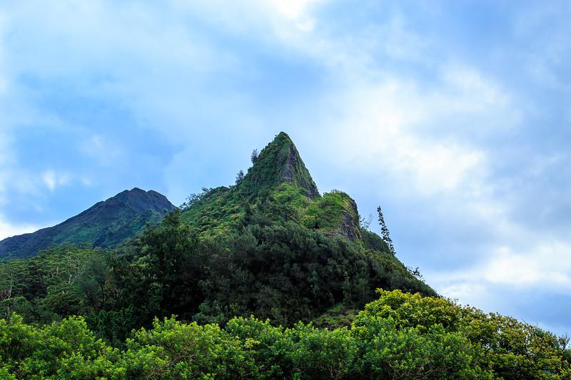 Hawaii 2018 reg cam-8269.jpg
