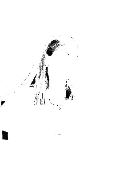 DSC08968.png