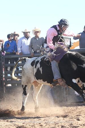 Mazic Tas Rodeo 2017