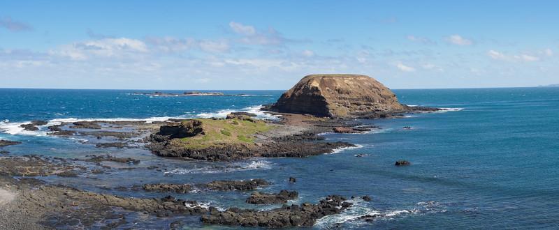 The nobbies phillip island