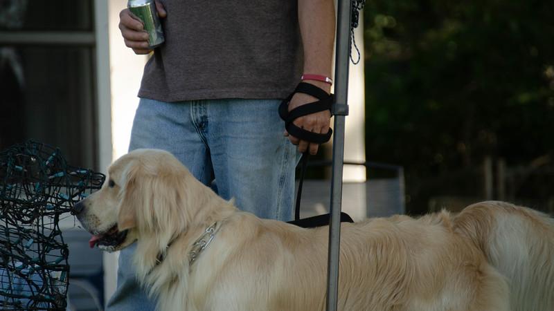 PuppyParty18-688.jpg