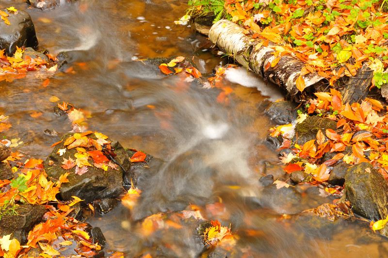 Down stream from Munising Falls