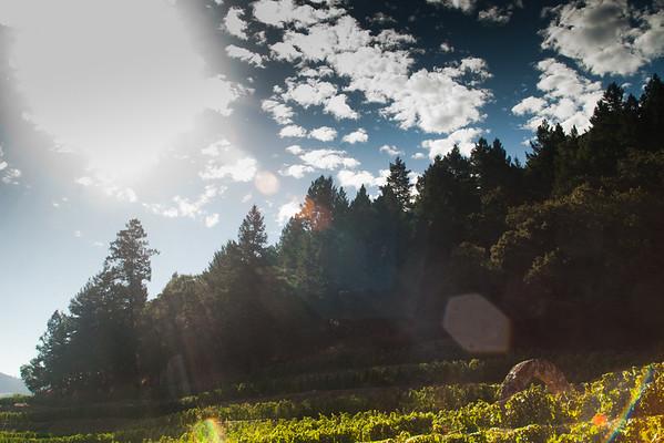 Photography Harvest 2011