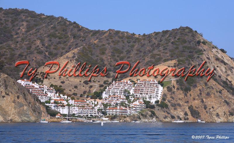 Canon Captures Catalina 2007
