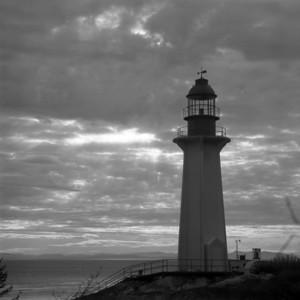 Mundy Park/Lighthouse Park, November/December 2010
