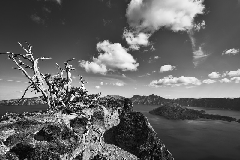Yet another amazing crazy landscape around the stunning Crater Lake. Love also the drama brought by the picturesque old dead tree standing in the foreground.