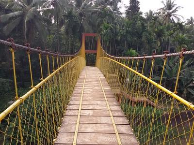 Vennakkadu Hanging Bridge - Calicut