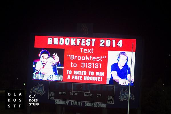 Brook Fest 2014