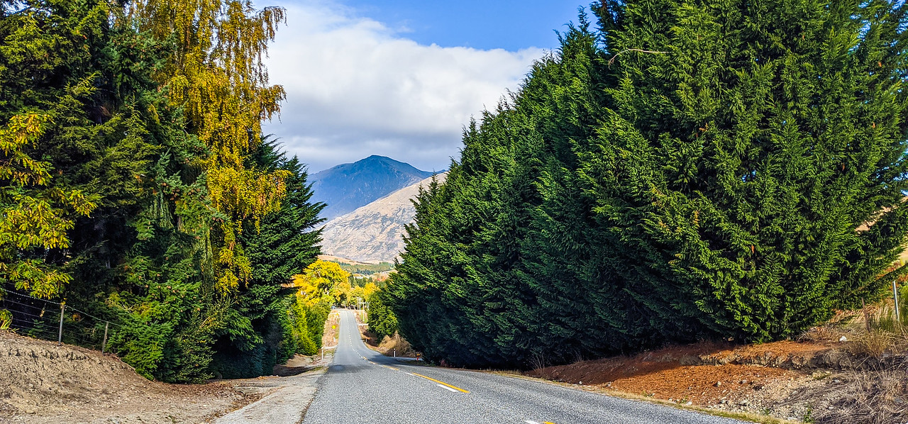NZ Fall 3
