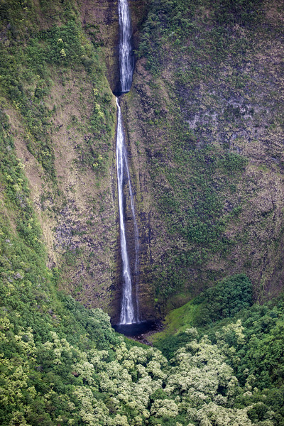 Hawaii - 061612 - 297.jpg