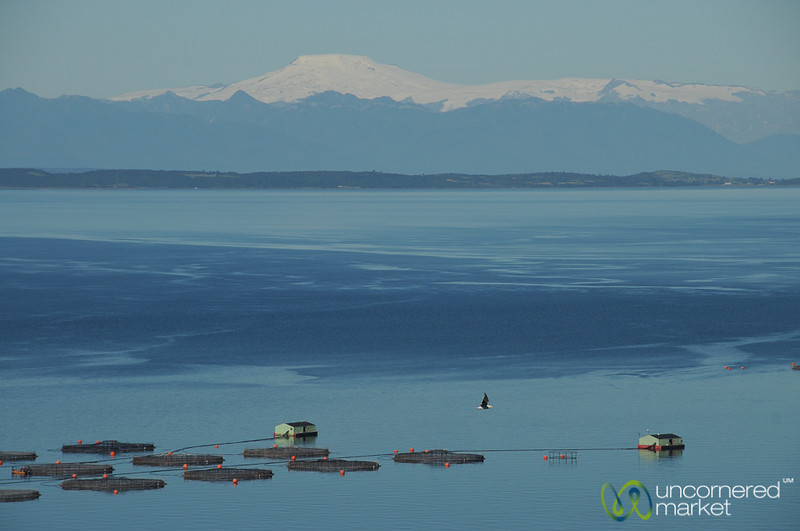 View of Snow Capped Mountains - Chiloe Island, Chile