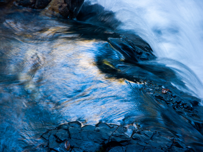 Stream, Uvas Canyon County Park, California, 2006