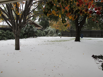 Dec-6-2013