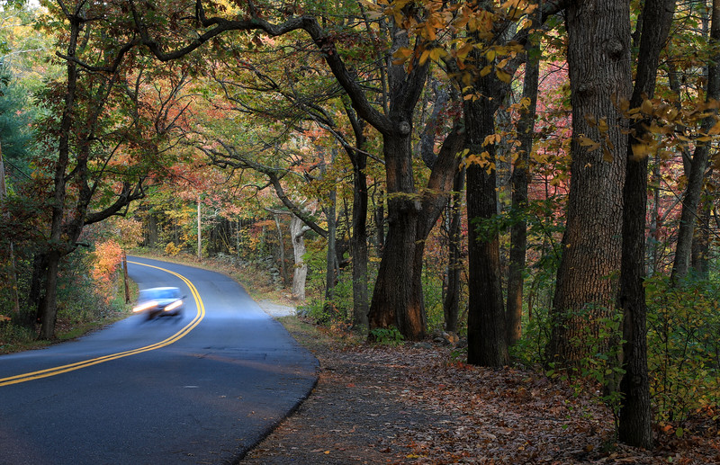 Fall Road HD.jpg