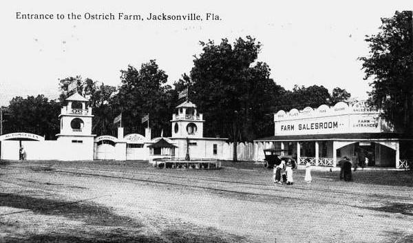 Ostrich Farm-1913.jpg