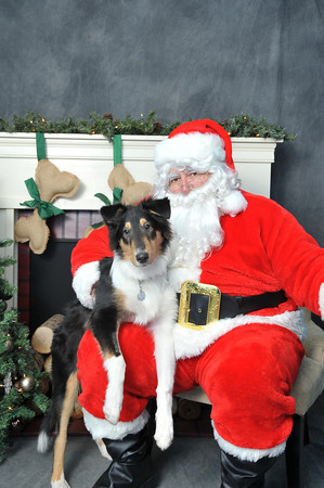Super Dogs & Cats Santa Photos 2013
